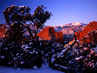 Garden of the Gods Winter #1