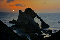 Bowfiddle Rock #1