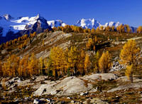 Purcell Mountains Autumn, British Columbia