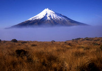 Mt. Tarankai and Fog